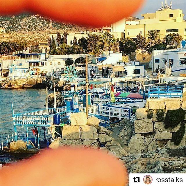 Repost @rosstalks・・・Anfeh, Lebanon 🇱🇧 in a pinch!https://www.facebook
