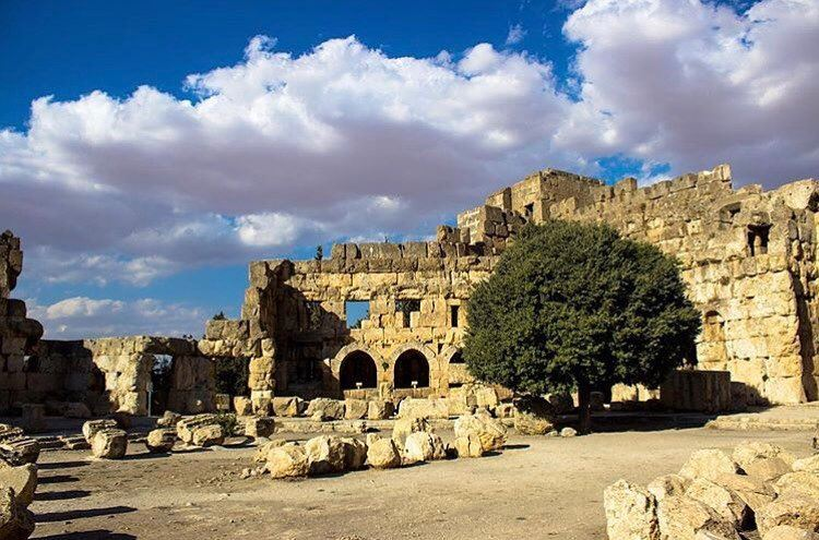 The old Romans all wished to have a king over them because they had not... (Baalbek, Lebanon)