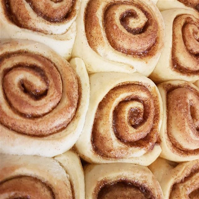 Cinnamon Rolls🌸Ingredients2 1/2 tsp of Dry Yeast3/4 cup of Milk1/4... (Laval, Quebec)