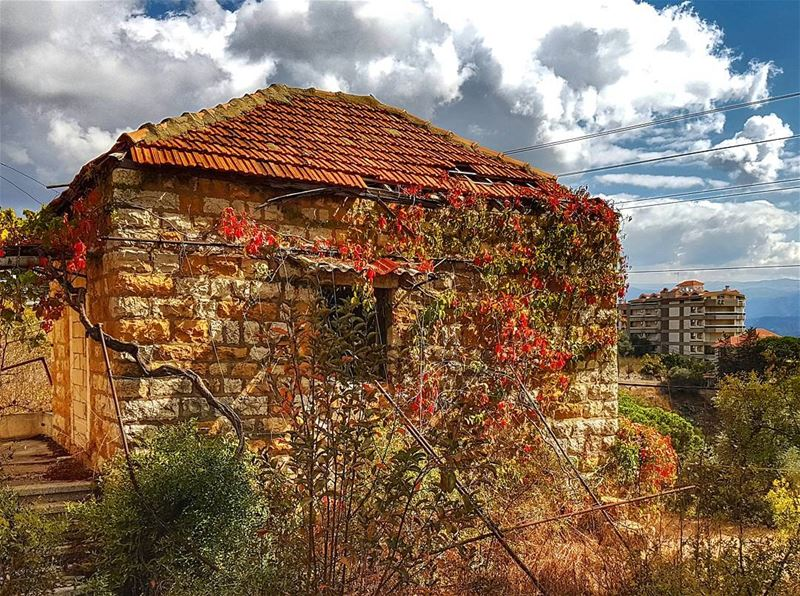 The old house wearing autumn colors  lebanonhouses  oldhouse  autumn ... (Brummana)