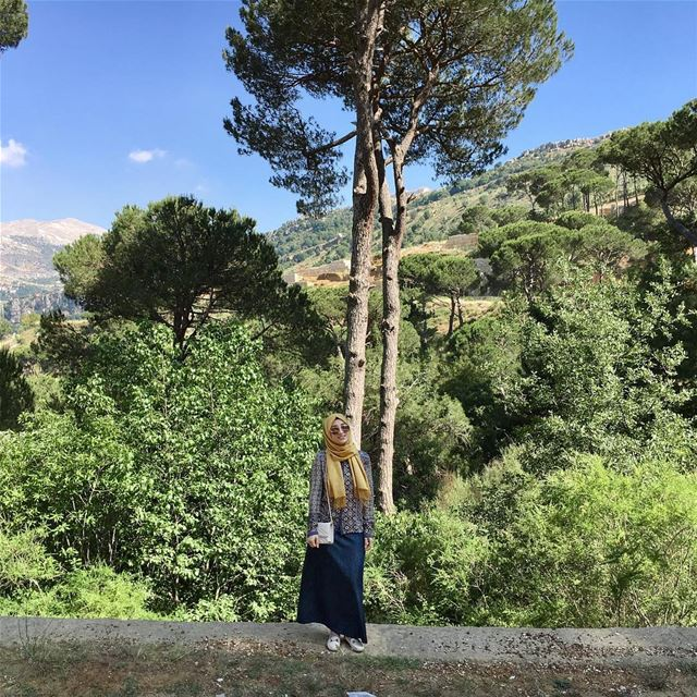 So I have been away for a while, I used to be more active, been really... (Bkassin-jezzine)