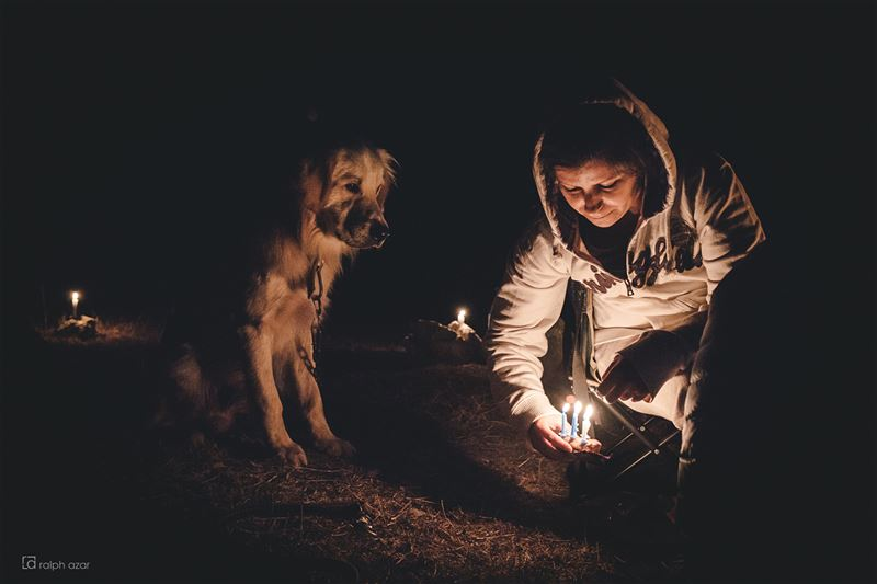 Candles & fire🔥🏕🎂  camping  bonefire  dogs  birthdaycake........