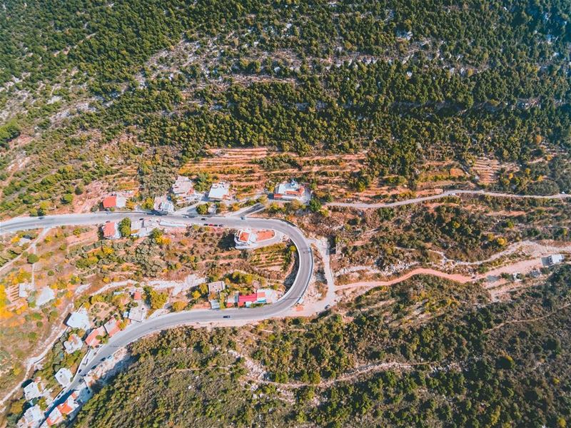 Morning 🏡💚 ⠀⠀⠀⠀⠀⠀⠀⠀⠀⠀⠀⠀⠀⠀⠀⠀⠀⠀⠀⠀⠀⠀⠀⠀ ⠀⠀⠀⠀⠀⠀⠀⠀⠀⠀⠀⠀⠀⠀⠀⠀⠀⠀⠀ ⠀⠀⠀⠀⠀⠀⠀⠀⠀⠀⠀⠀⠀⠀⠀⠀... (Hâqel, Mont-Liban, Lebanon)