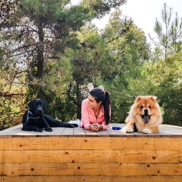 Workout partners 🐶🐶❤  EnzoMyBlackLab   FluffyMyChow....... dogs ...