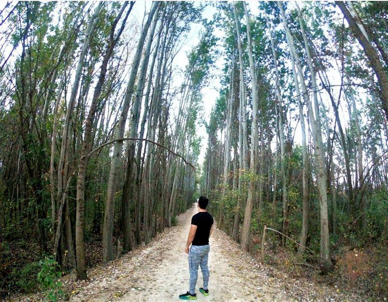 Choose your own path so you can reach lands to call your own. 🌲🌲  gopro ... (Taanayel- Bekaa)
