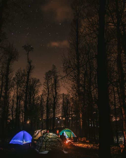 Even the withered forest, at night seems alive🔥🌌⛺.... camping... (Aakar, Liban-Nord, Lebanon)