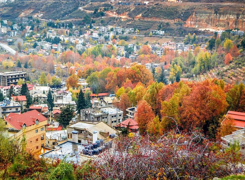 The beautiful colors of Autumn. Faraya, Lebanon.  livelovefaraya | Good... (Faraya, Mont-Liban, Lebanon)