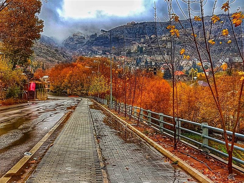 """I don't know where my road is going, but I know that I walk better when I... (Mount Lebanon Governorate)"