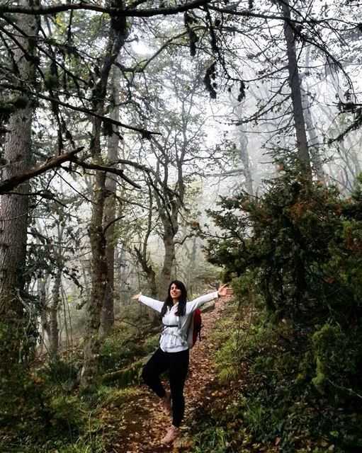 hiking  forest  lebanon  outdoorpeople  mountainaddict  mountains  nature...