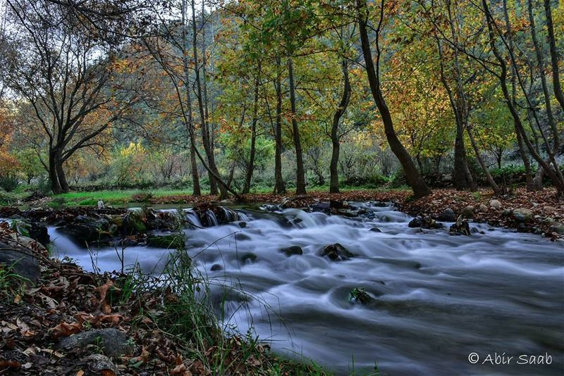 Lebanon  ouyounelsamak  akkar  لبنان  عكار  lake  riverside  rivers ... (Ouyoun El Samak Waterfalls)