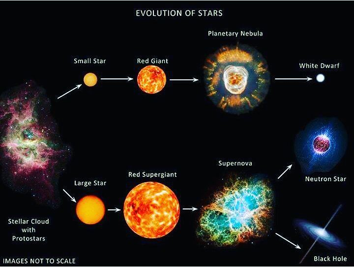 Evolution of stars. evolution  stars  facts  space  photooftheday ...