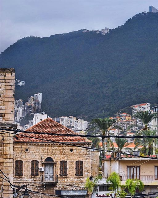 Have a heart that never hardens, and a temper that never tires, and a... (جونية - Jounieh)
