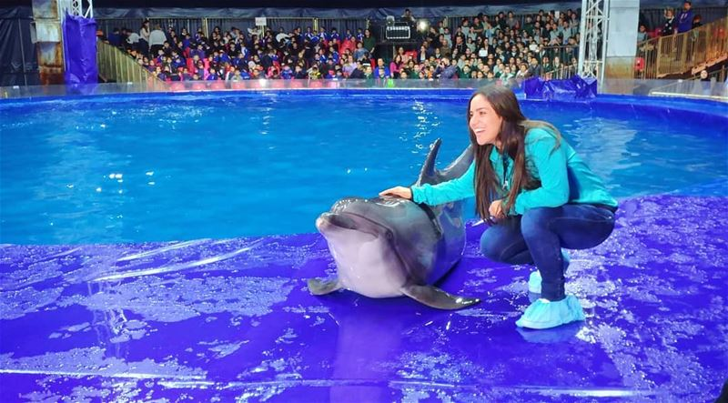 Hello Friday😁😊💥  goodmood  goodmorning  smile  newday  new  dolphins ... (Dolphin Show Beirut)
