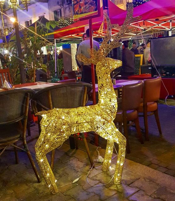 Tis the 🦌 season ........ Lebanon  Beirut  christmas ... (Badaro the Street)