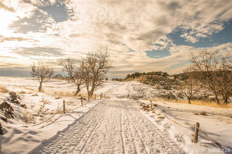 The road to heaven.. nikon  sigmaart  photography  picture  trip  snow ... (Arz Tannoûrîne)