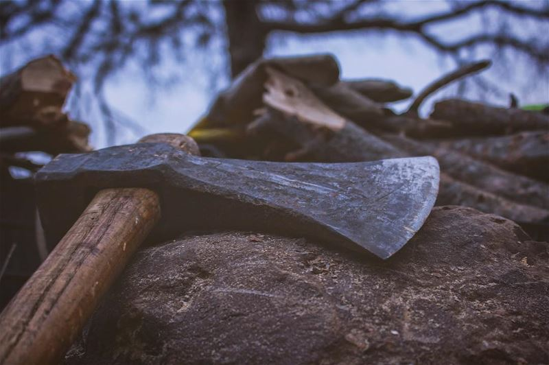 'the axe forgets what the tree remembers...'''' photography ... (Lebanon)