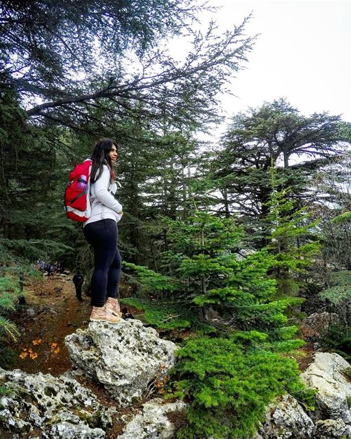 A  Girl With  Power Like  Cedars 🙆🌲 outventuregirls  hikergirl ... (Ehden Natural Reserve)