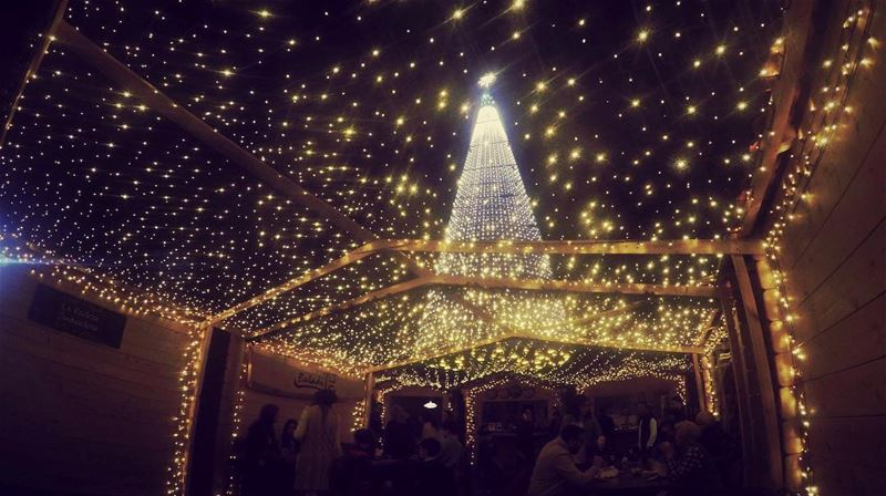 Christmas with all its warmth 🎄💫 christmas  stars  lights  decoration ... (جونية - Jounieh)