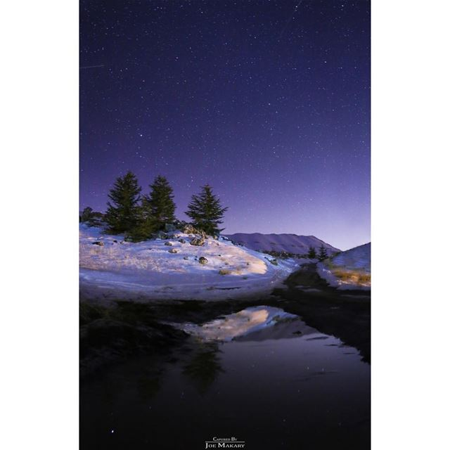 geminidmeteorshower  cedars  cedarsofgod  waterreflection  stars  sky ...