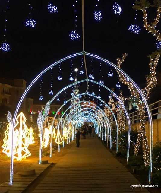 ✨🎄 followforfollow  follow  like  like4like  photography  photooftheday ... (Jbeil-Byblos)