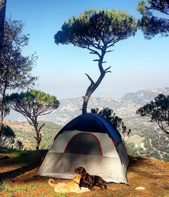 Goodmorning  lebanon  lovecamping  livelovecamp  wildernesslebanon ...