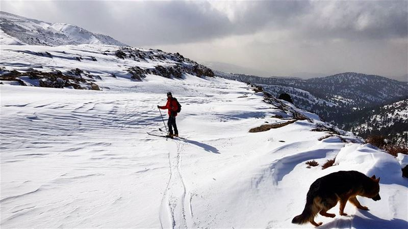 aboutlastweekend  wintersportsWhat are your  plans for the  weekend ?... (Al Qubayyat, Liban-Nord, Lebanon)