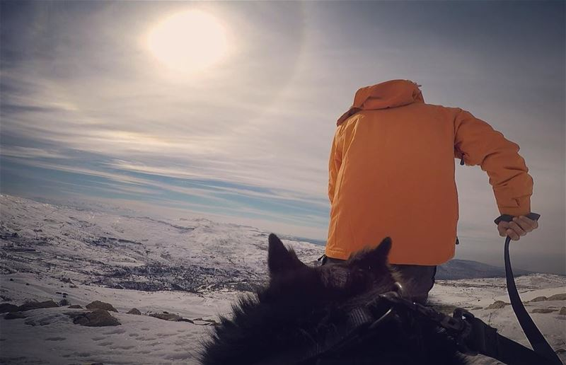 You lead, I photo  dodger_thedog ... gopro yallagopro goprohero5 hero5...