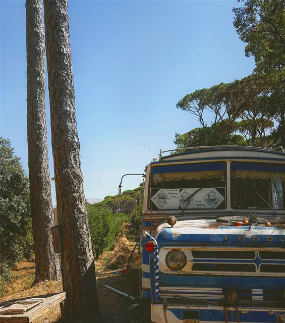 Let's run away?... vanlife  bus  forest  countrylife  relaxing ... (Ra'S Al Matn, Mont-Liban, Lebanon)