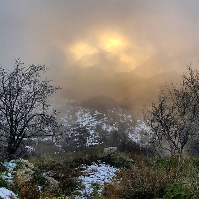 winter  mist  view  sunset ...