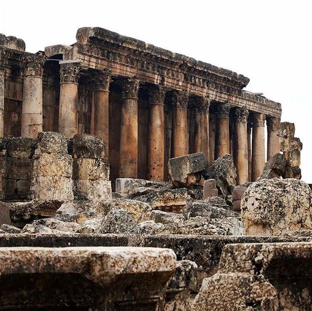 Baalbeck Ruins 🏛📷 @hedbeats  Baalbeck Temples Castle Proud... (Temple of Bacchus)