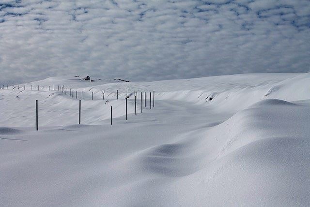 The future lies before you, like a field of fallen snow; Be careful how... (Cedars of God)