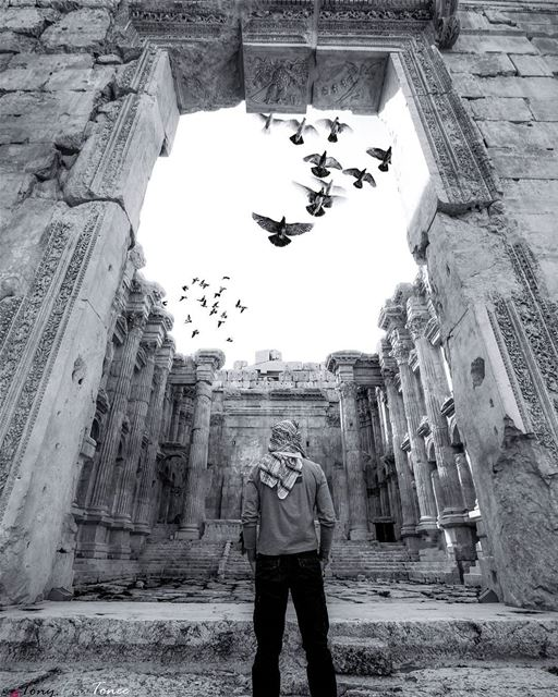 In front of some things or situations, nothing can be said or done. You... (Baalbek, Lebanon)