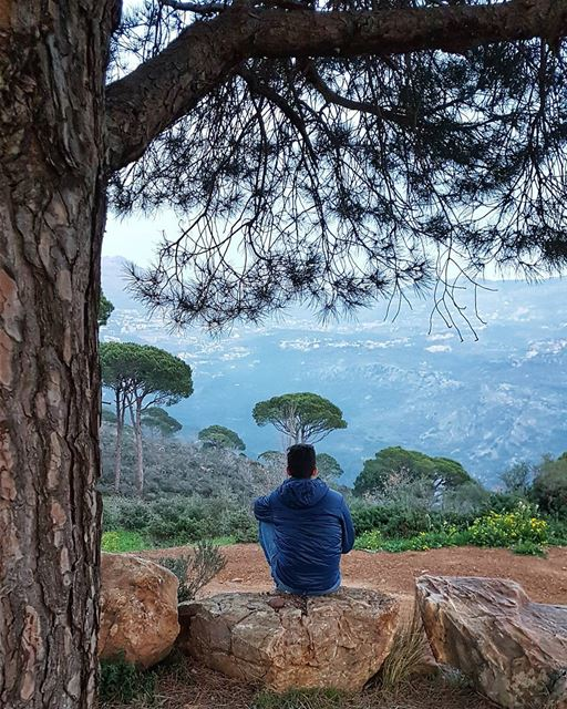 Look deep into nature, and then you will understand everything better.🌳🌳� (Deïr El Harf, Mont-Liban, Lebanon)