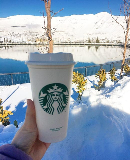 Your afternoon is not complete without your daily dose of coffee........ (Zaarour Lake)