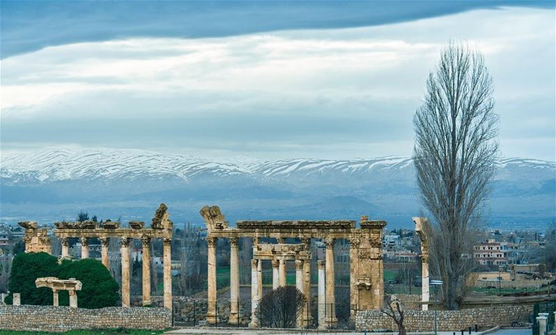Baalbeck, Lebanon's greatest Roman treasure, can be counted among the... (Baalbek, Lebanon)