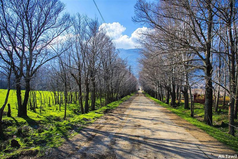 ⛰️ nature  landscape  beautiful  nikon  d810  photography  naturelovers ... (West Bekaa)