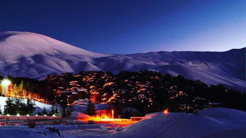 The best picture of the century to me  cedars lebanon nature ski snow...