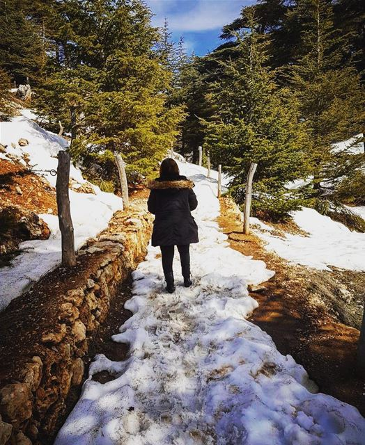 Life is like walking through the snow: every step shows.Jessy Lair ... (El Arz, Liban-Nord, Lebanon)