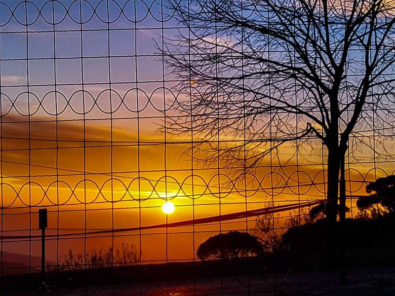 Through the fence  sunset  sunset_ig  ig_sunsetshots  amazing  colors ... (Ferme Mar Chaaya)