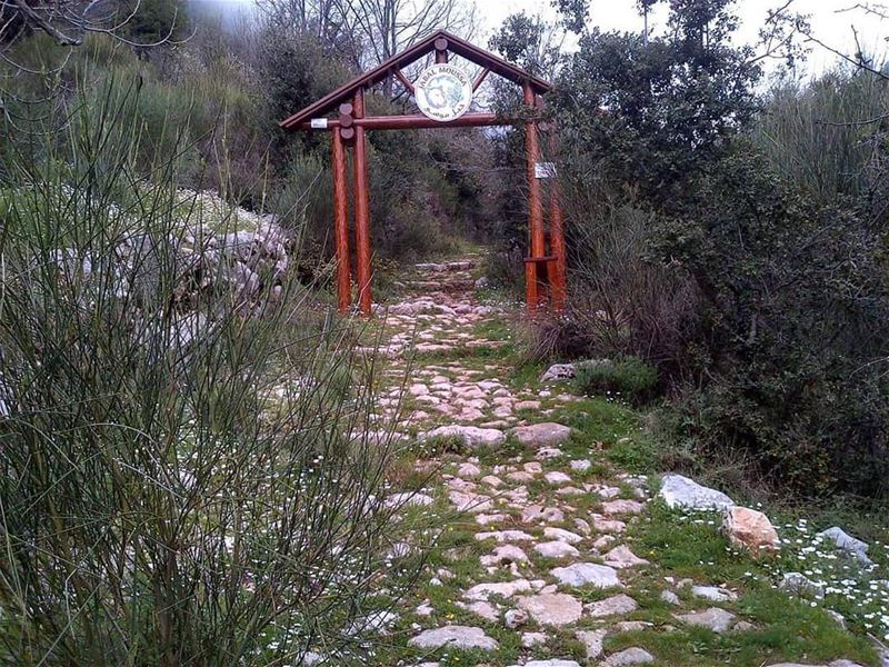 Have a Beautiful week ahead. JabalMoussa  Mchati entrance (Roman Stairs...