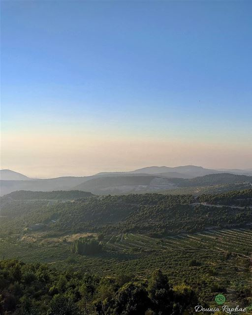 """If we surrendered to earth's intelligence, we could rise up rooted, like... (Annâya, Mont-Liban, Lebanon)"