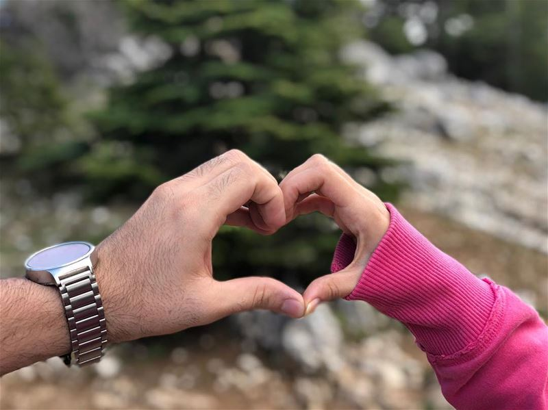 We 💘 Your cedar trees our lovely country 🇱🇧 (Arz el Bâroûk)