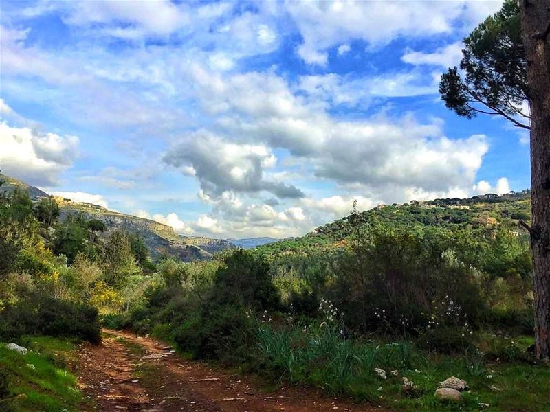nature  naturelovers  landscape  landscapephotography  mountains  trees ... (Kafr Mattá, Mont-Liban, Lebanon)