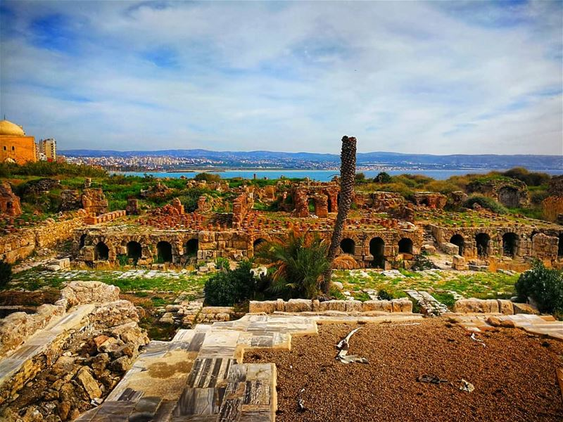 Tyre and Sidon, ancient cities of Phoenicia, are mentioned several times... (Tyre, Lebanon)
