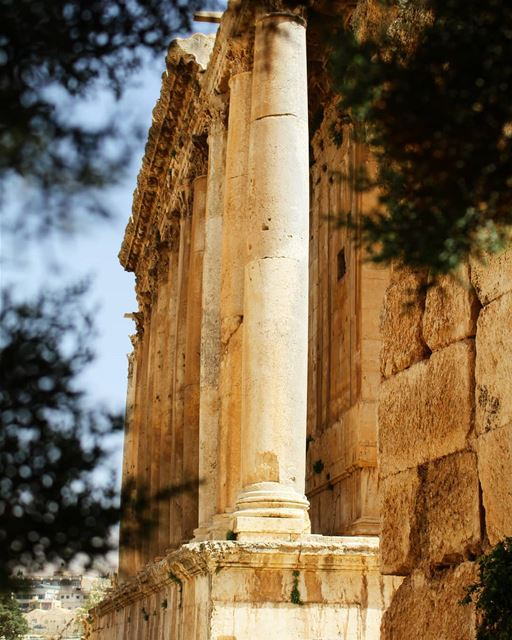 Pillars! pillars  temple  perspective  architecture  photography  history... (Temple of Bacchus)
