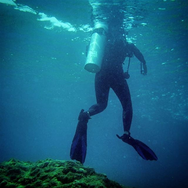 Lost the head -  ichalhoub in  Batroun north  Lebanon shooting  underwater...