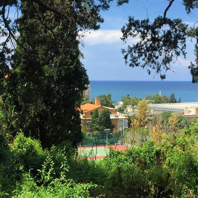 The sky, the sea and a touch of green... 🌿🌱🍃🌺🌸🌼 .. aub ... (American University of Beirut (AUB))