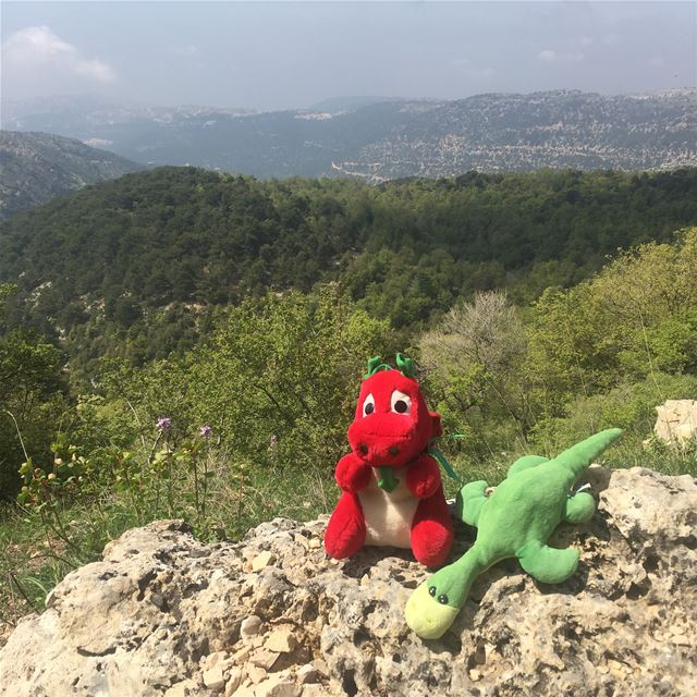 Ness & Griff hiking in the Ehden Natural Reserve!They thought it is the... (Ehden, Lebanon)