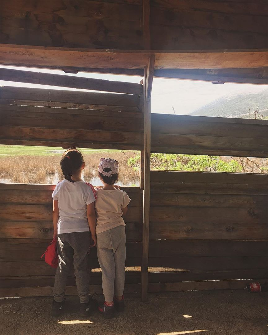 • Kids don't remember their best day of Television •  kids  nature  hike ... (محمية عمّيق)