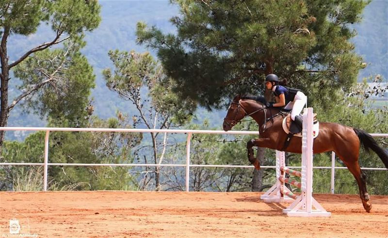 horse horses jumping competition jumpingcompetition race champion... (Lebanese Equestrian Center)